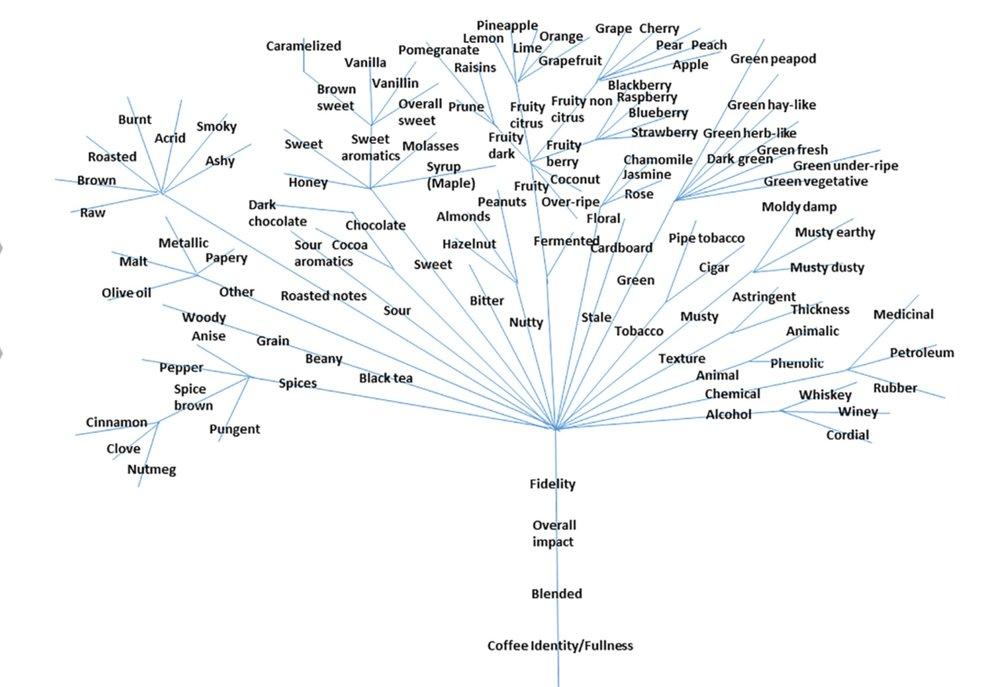 Chambers et al. 2006. Journal of Sensory Studies. 31: 465–480
