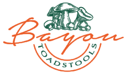 Bayou Toadstools Logo Black Green Orange - ALT.png