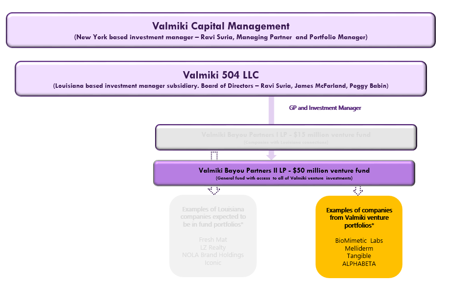 VBP II LP Flow Chart Website.PNG