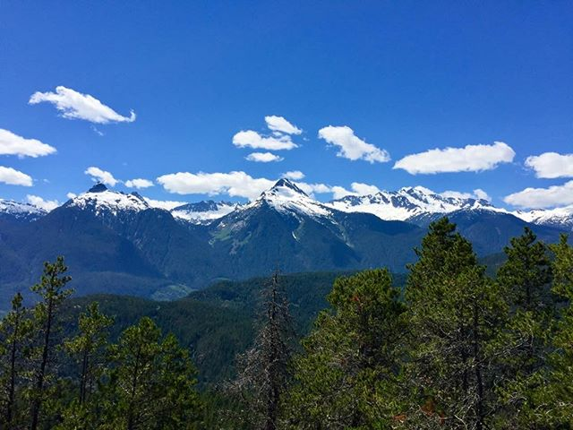 What more can you ask for?  #bc #squamish #mountains #bluesky #brohmlake #tantalus #seatosky #overtheriver #lookout #trails #altrarunning #clouds #glaciers #summer