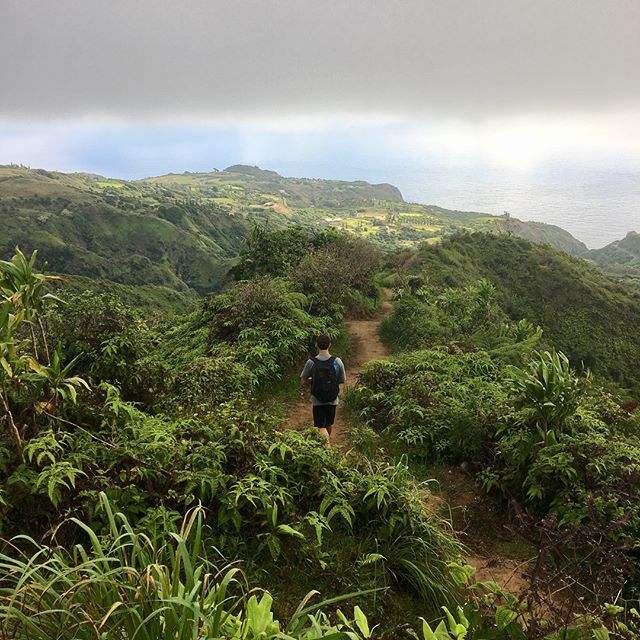 Took a break from the ocean and made our way up to catch the sunrise in the northwest part of the island ⛰• 📸: @heyyyitsalii . . . . . #maui #waihee #sunrise #ocean #hawaii #green #trail #hiking #sunday #tropics #earlystart #exploremaui