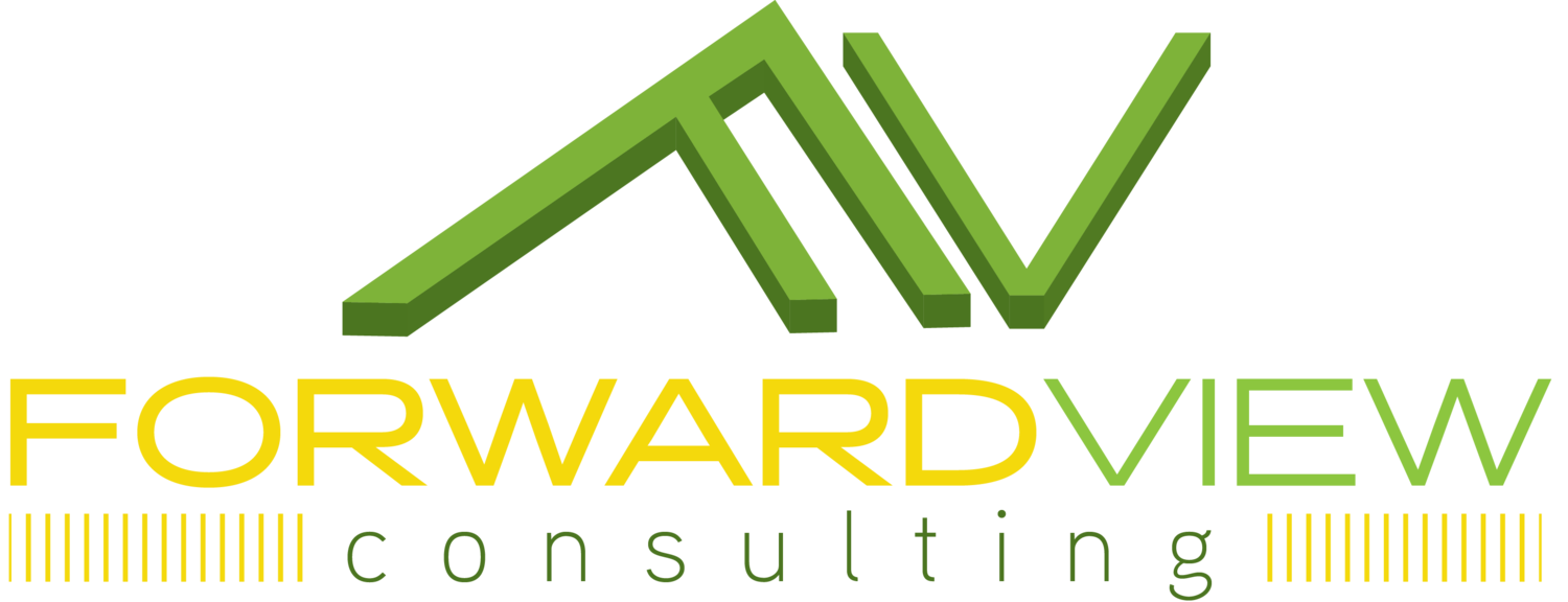 Forward View Consulting
