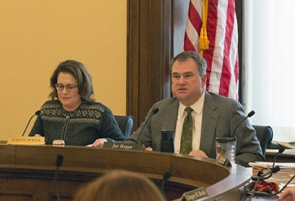 Commerce Committee Chair Rep. Joe Hoppe and Health Care Finance Chair Sen. Michelle Benson at the conference committee on HF1 /SF1.