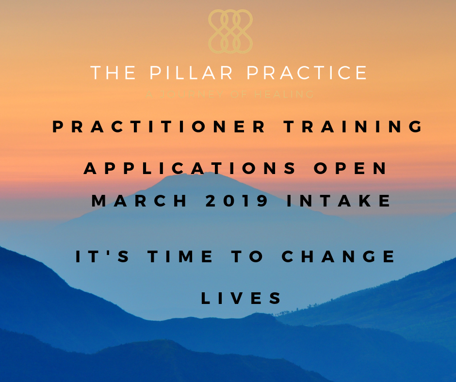 Practitioner training applications open now 2019.png