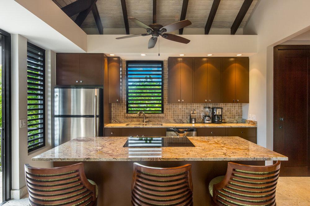 037 Xanadu Kitchen.jpg