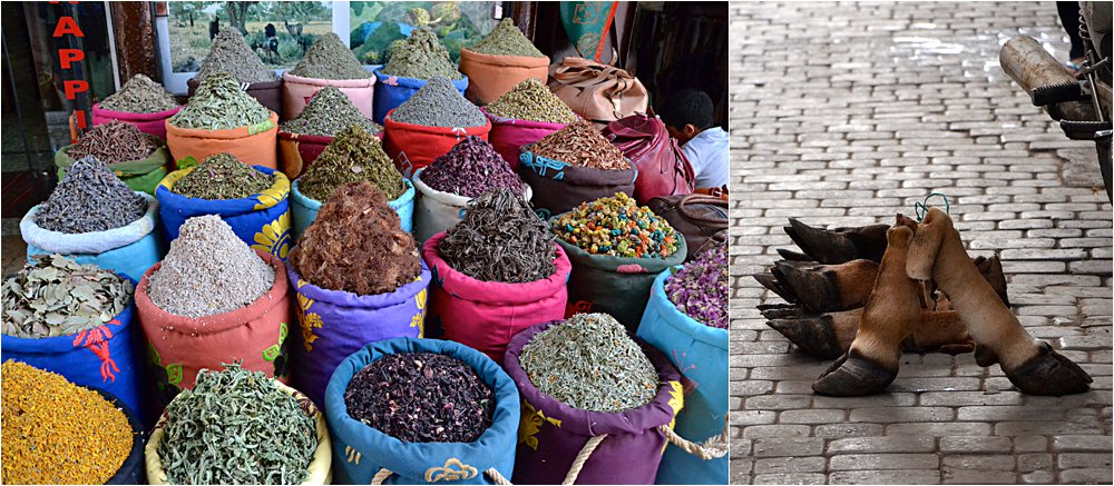 Just some spices and cow feet you can get in Marrakesh.