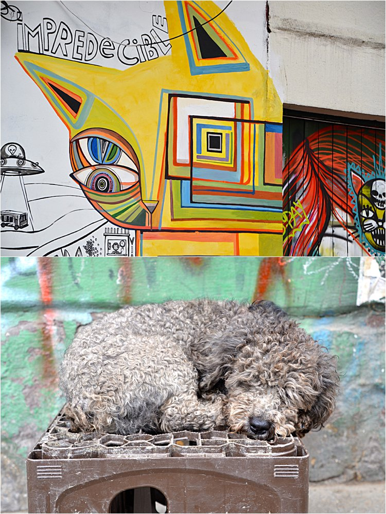 Street art tour in Bogota.
