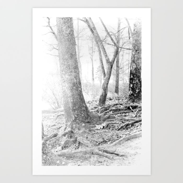 forest-stu-prints.jpg