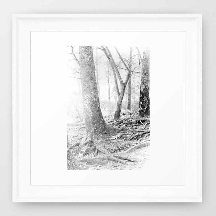 forest-stu-framed-prints.jpg