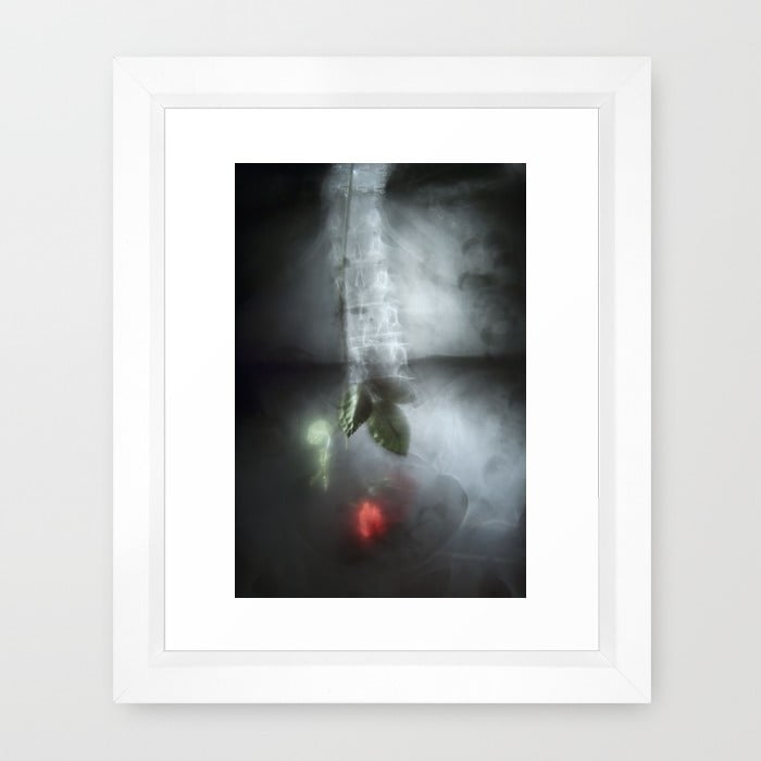 spine-k3c-framed-prints.jpg