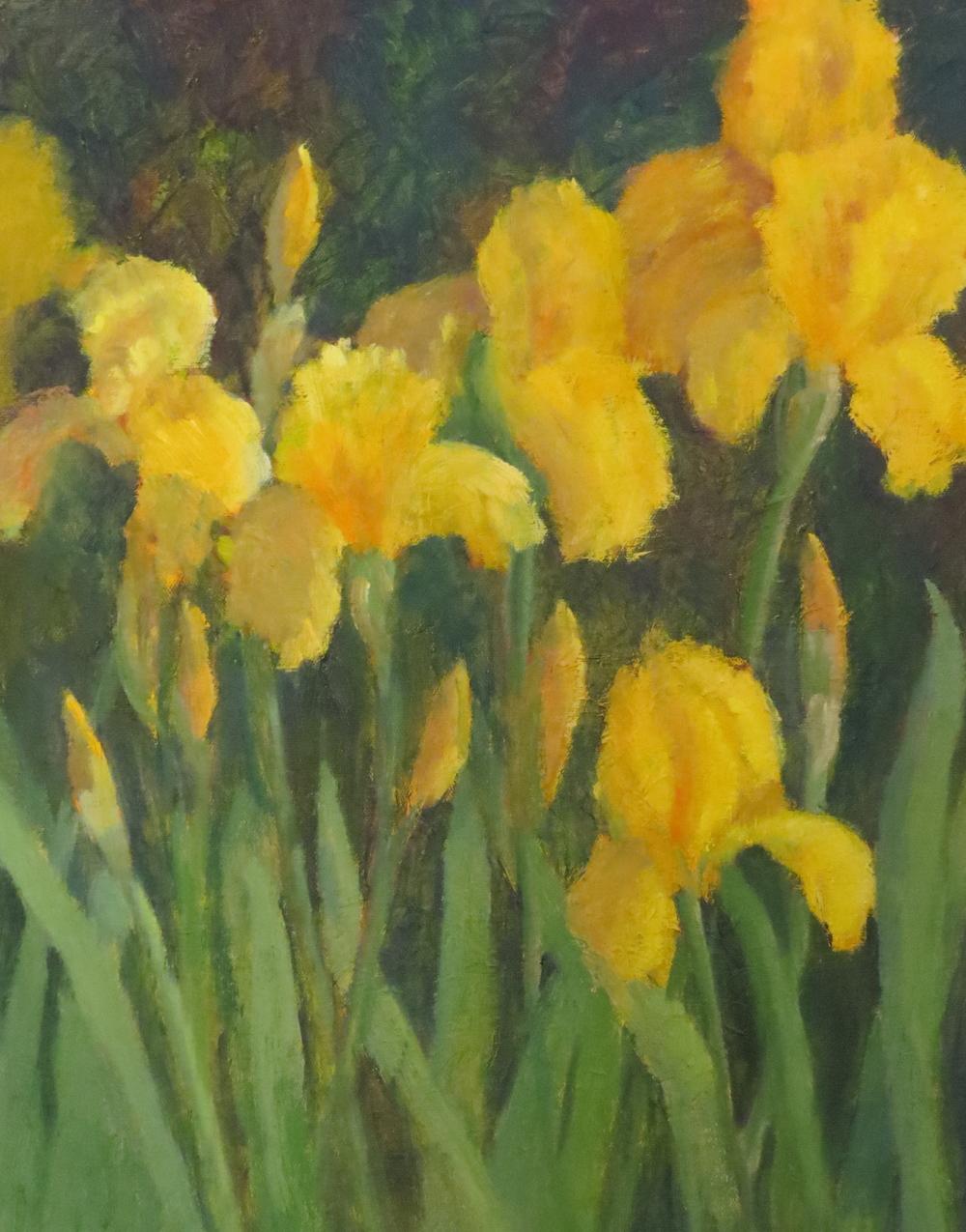 """Joyful Iris  20"""" x 16"""""""
