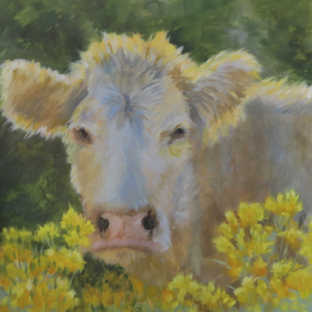 "Moo-ve Along  12"" x 12""  SOLD"