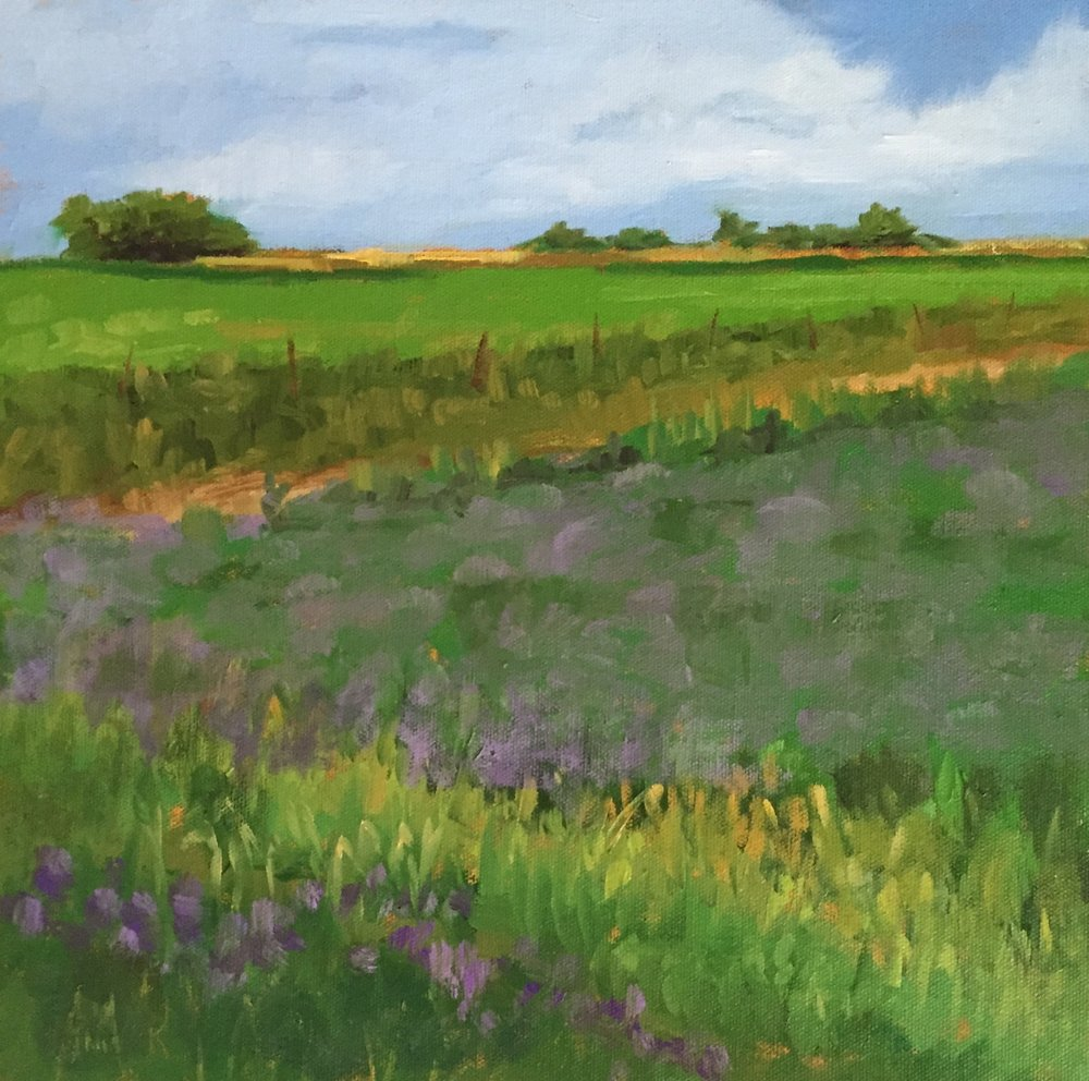 "Field Of Clover  12"" x 12""  Juried into Women Artists Of The West 2018 National Exhibition"