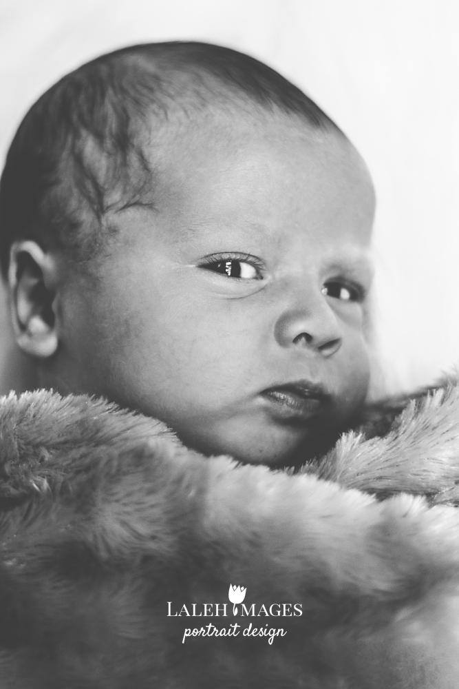 Newborn Baby Max