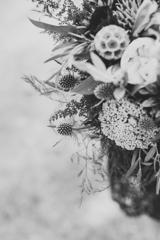 Flowers - B&W