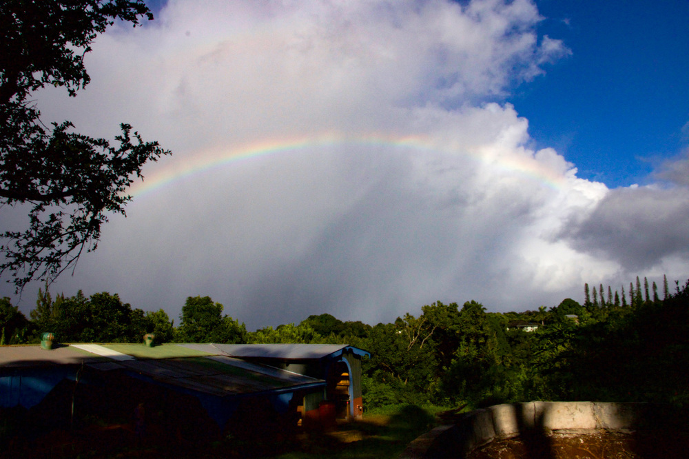 A full rainbow over the old macadamia processing shed