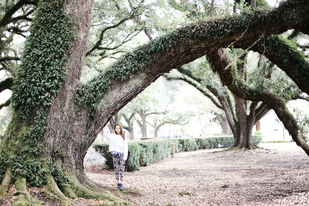 a-visit-to-the-new-orleans-plantation-8