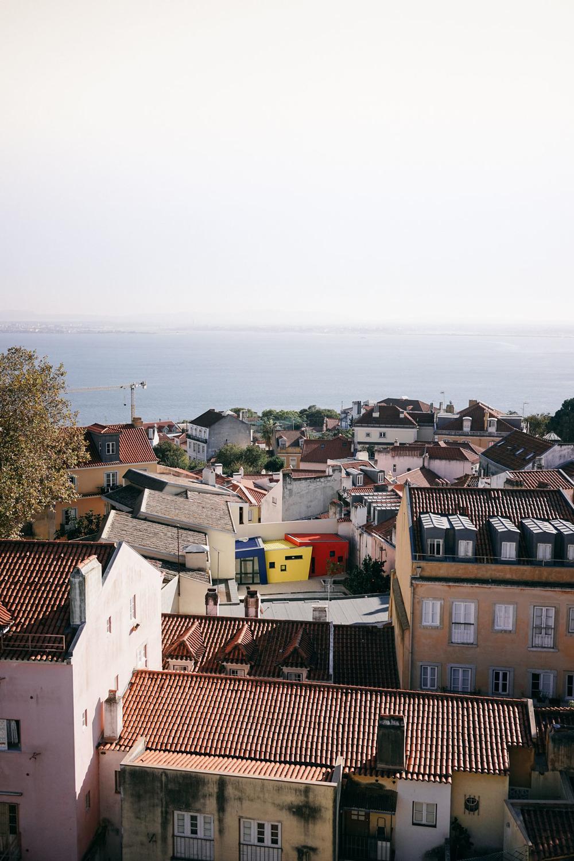le sycomore lisbon rooftop