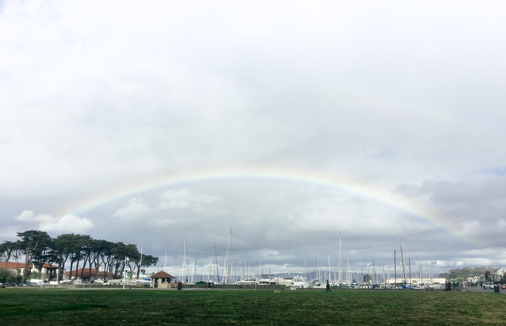 I encountered two rainbows during my stay in SF. What a delightful place. (Never saw any in New York lol)