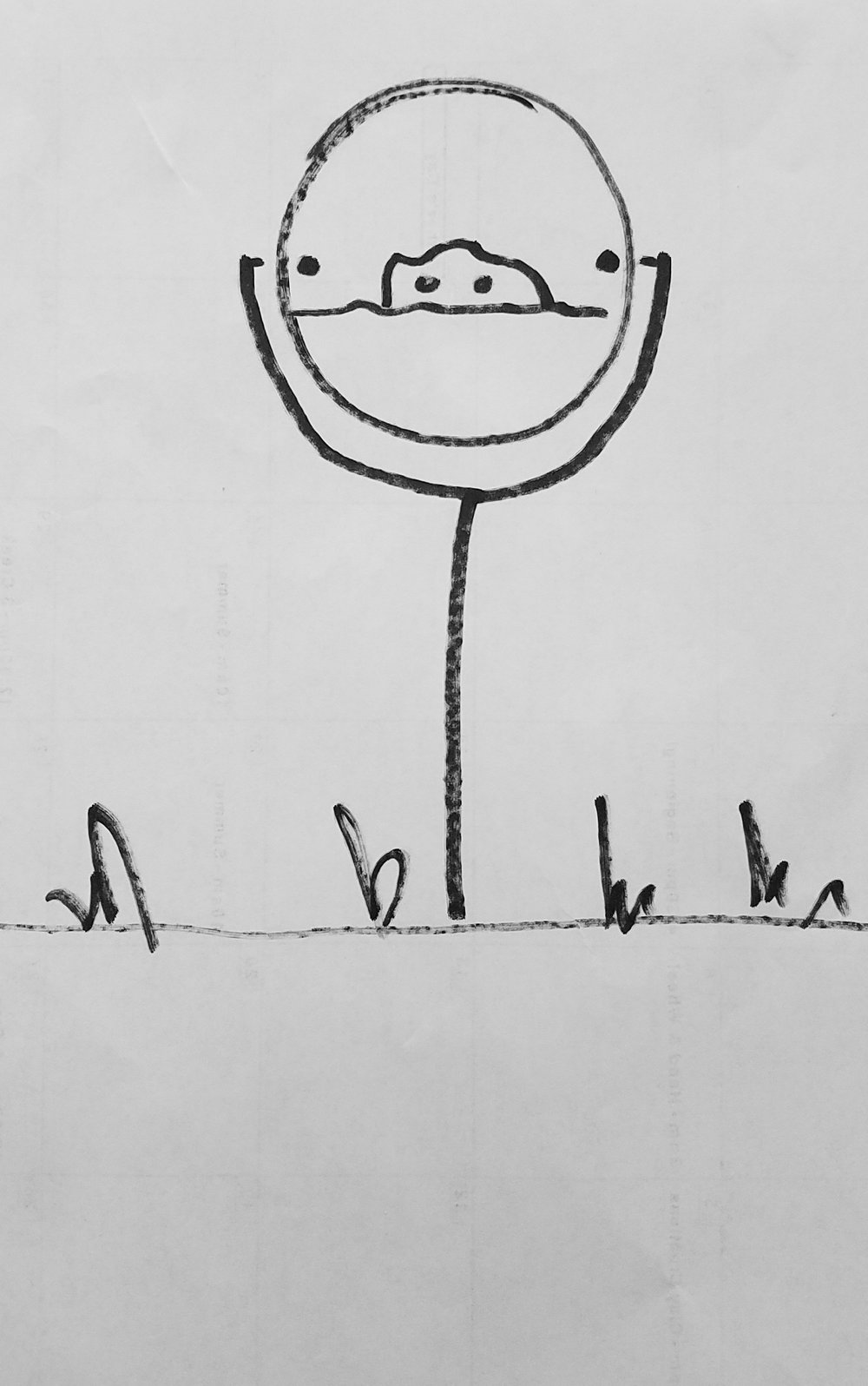 Thaumatrope_Sketch.jpg