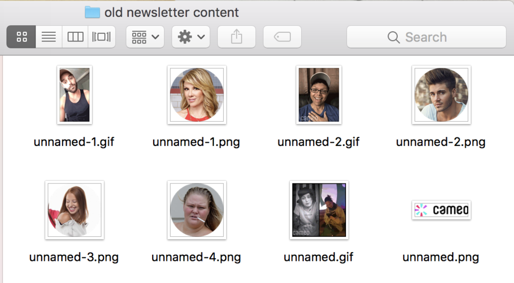 cameo old email newsletter content