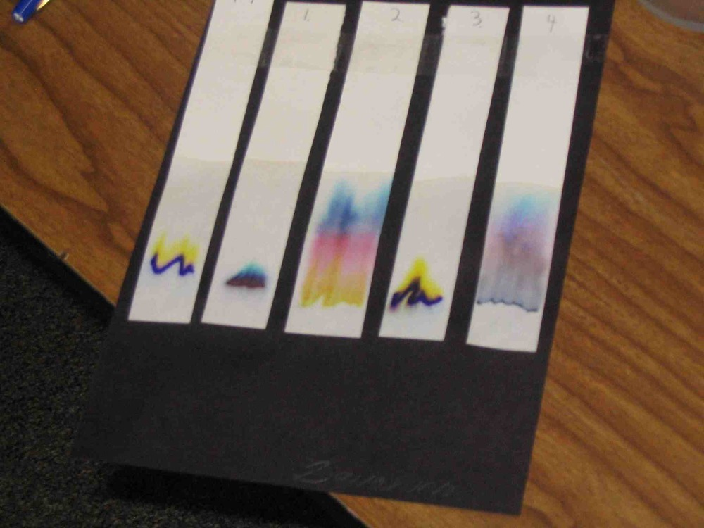 CHROMATOGRAPHY SLIPS