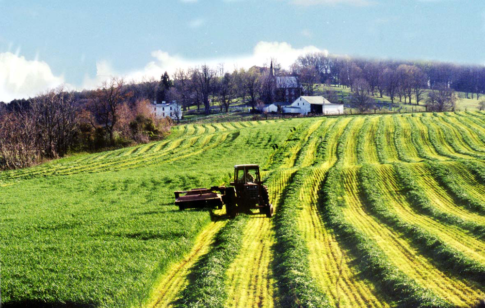 farmer-field.jpg