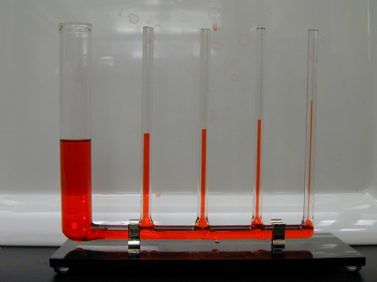 THIS SHOWS CAPILLARY ACTION, NOTICE THE THINNER THE TUBE THE HIGHER UP THE TUBE THE WATER TRAVELS?