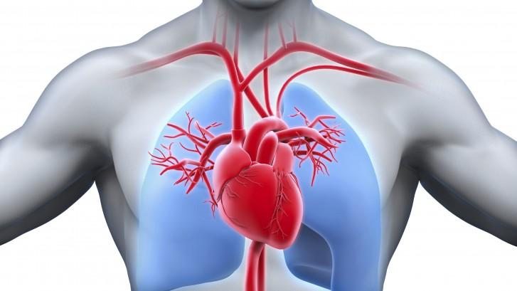 healthy-heart-727x409.jpg