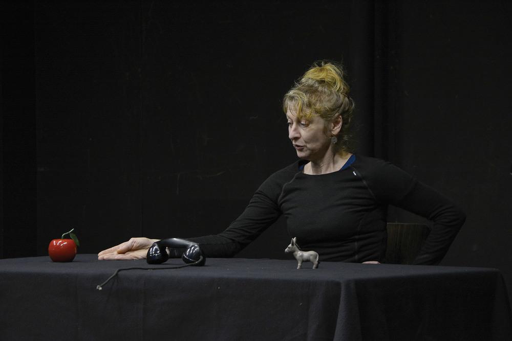 Chantier COI D'AUTRE mené par  Agnès Limbos  / fév 2016