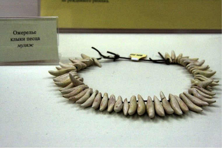 Figure 6. Kostenki culture fox necklace (http://www.donsmaps.com/images31/img_3588vlad2.jpg).