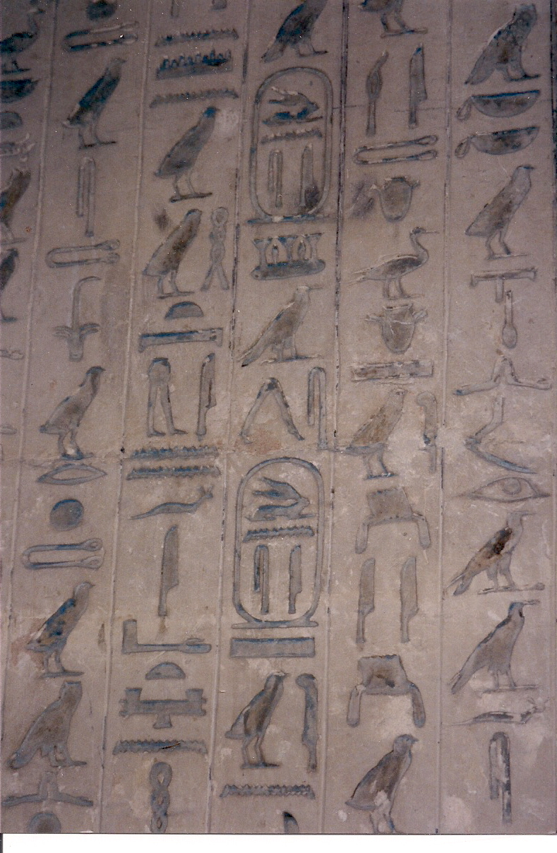 Figure 3.5. A close-up view of the wall of the tomb of Unis.