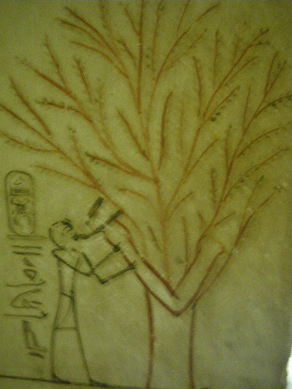 Figure 4.3. A tree of nourishment, from the tomb of Tuthmosis III, Valley of the Kings, Luxor, Egypt.