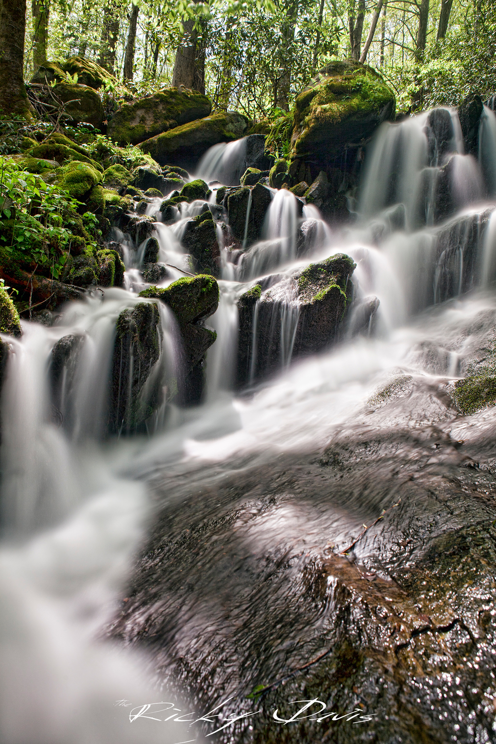 Waterfall in the Smokies - TRD Photography