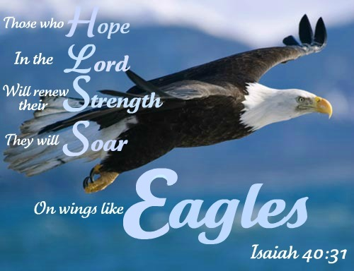 Isaiah 4031 They That Wait On The Lord Shall Renew Their Strength