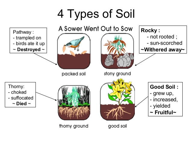 Luke 8 14 15 on which soil has the word of god taken root for What do you mean by soil