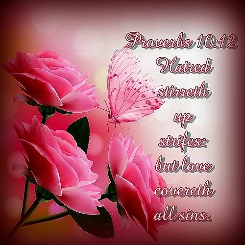 Love covers a multitude of sins proverbs