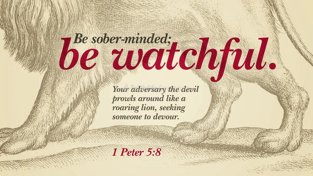 watchful.jpg