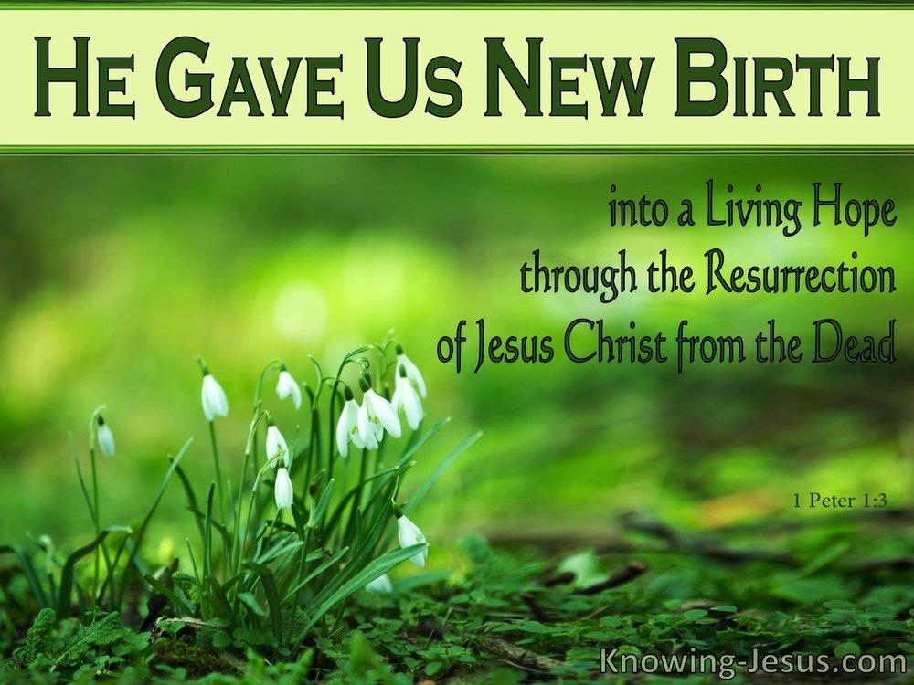 new birth.jpg