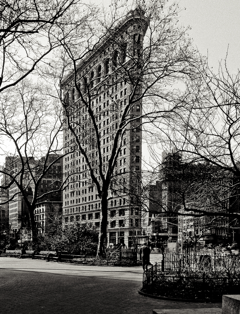 Flat Iron from Park.jpg