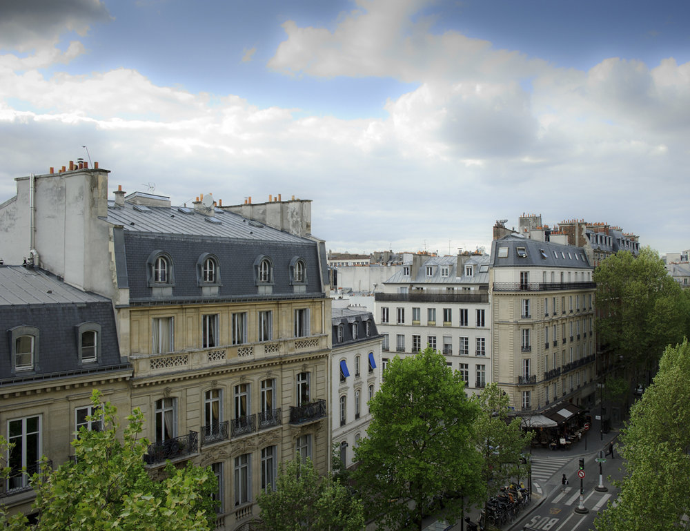 Roof tops in Paris-1.jpg