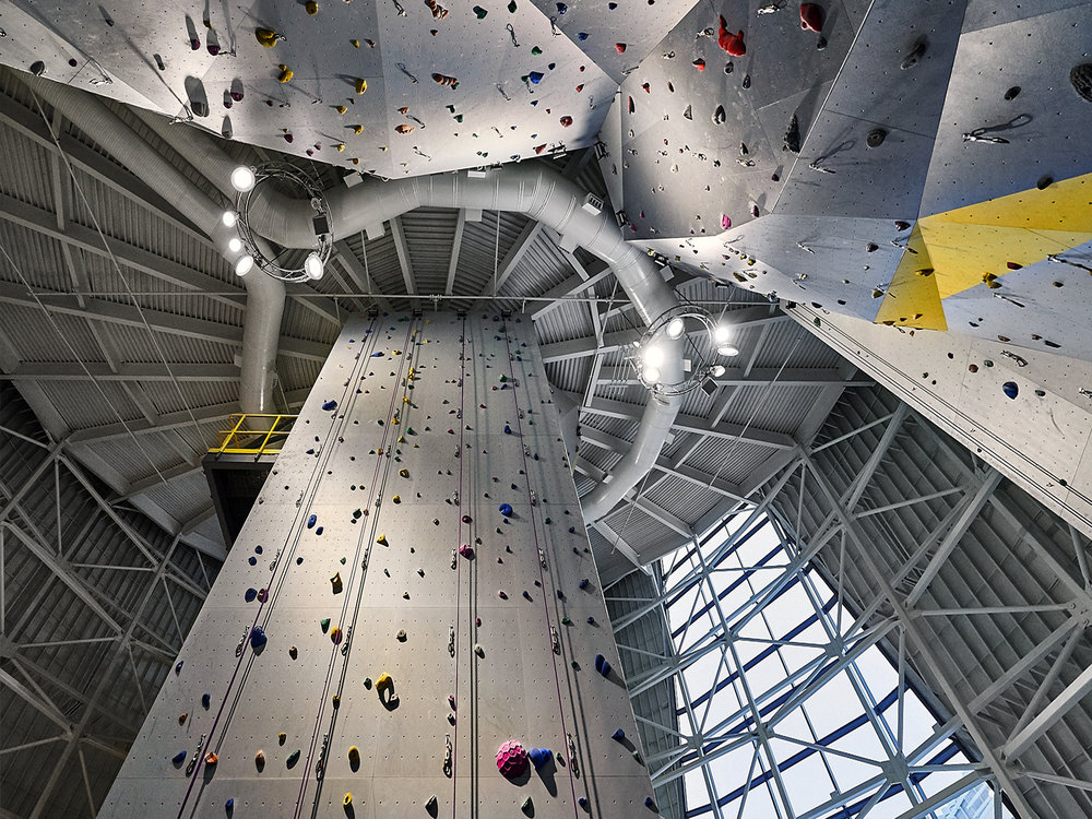 Paw Climbing Wall-25.jpg