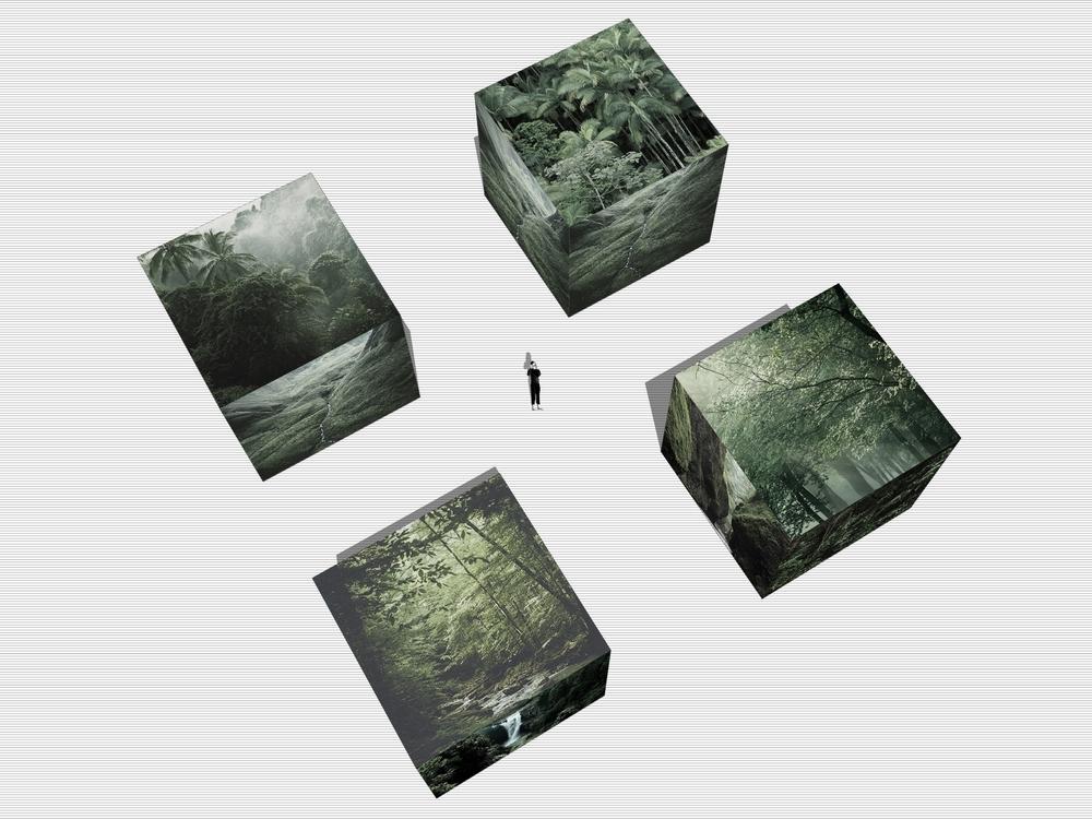 4boxes-final-2.jpg