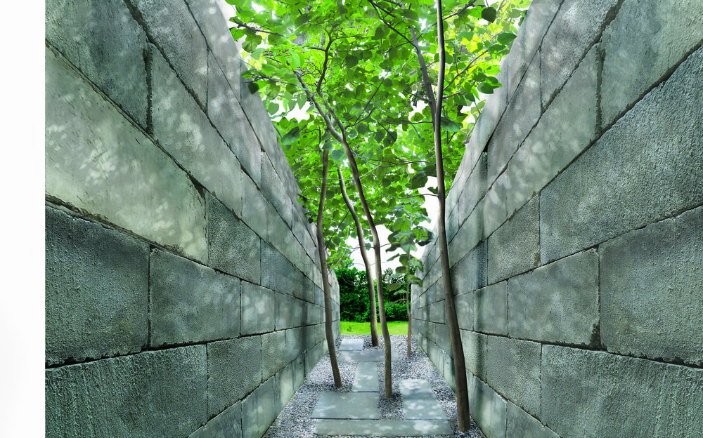 paulownia alley-07.jpg