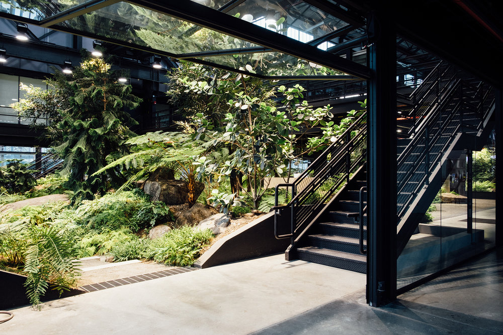 VERDANT, The Enclosed Forest, Mac Carbonell designer, Contemporary landscape, New York landscape design