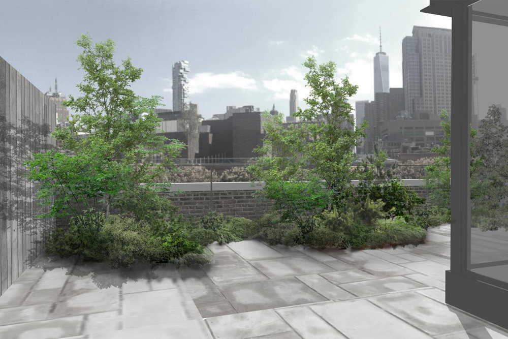 VERDANT, Greenwich Street Terrace, Mac Carbonell designer, Contemporary landscape, New York landscape design
