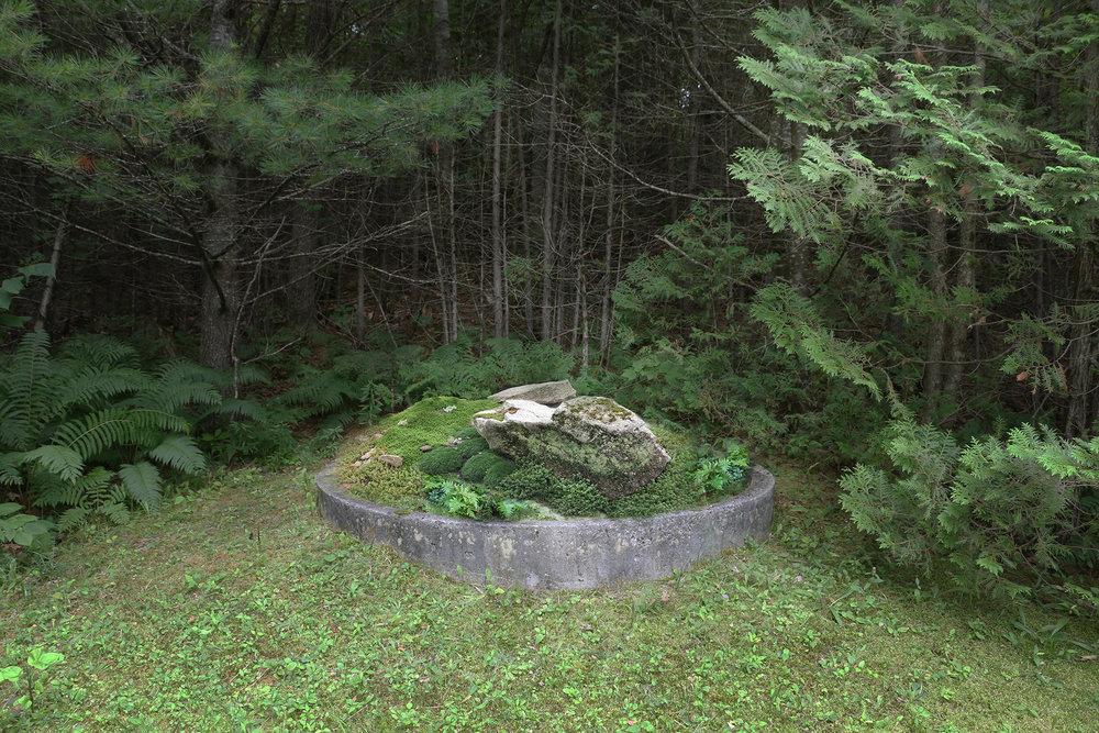 VERDANT, Lower Manhattan Terrace, Mac Carbonell designer, Contemporary landscape, New York landscape design