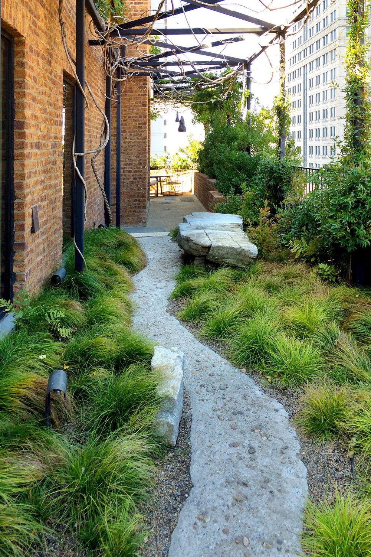 VERDANT, The Greenwich Hotel, Mac Carbonell designer, Contemporary landscape, New York landscape design