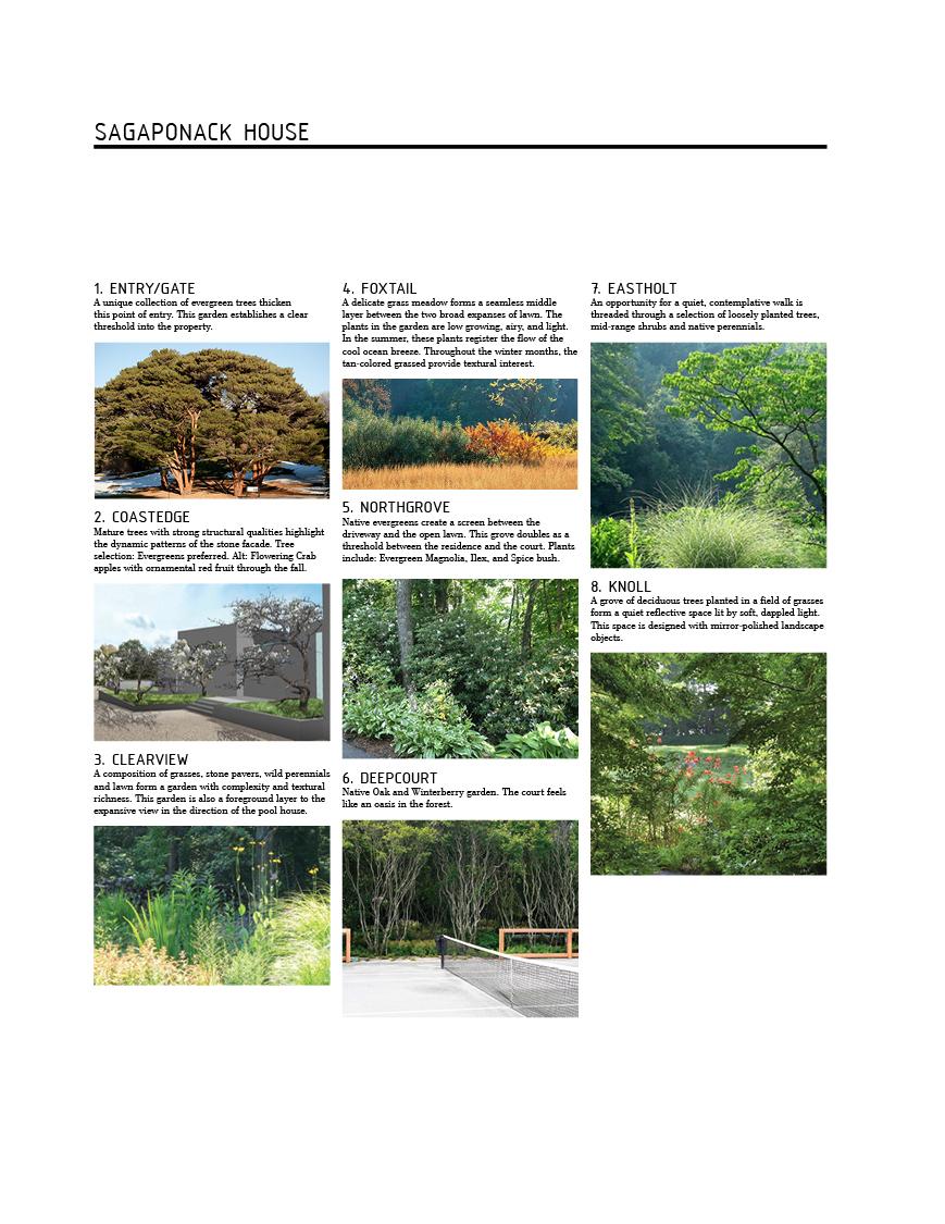 VERDANT, Sagaponack, Mac Carbonell designer, Contemporary landscape, New York landscape design