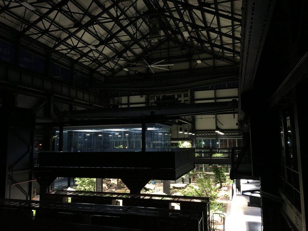 VERDANT,+The+Enclosed+Forest,+Mac+Carbonell+designer,+Contemporary+landscape,+New+York+landscape+design.jpg